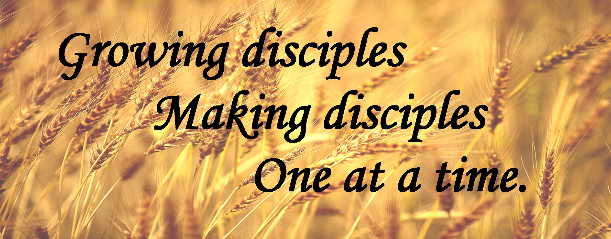 Growing-disciples